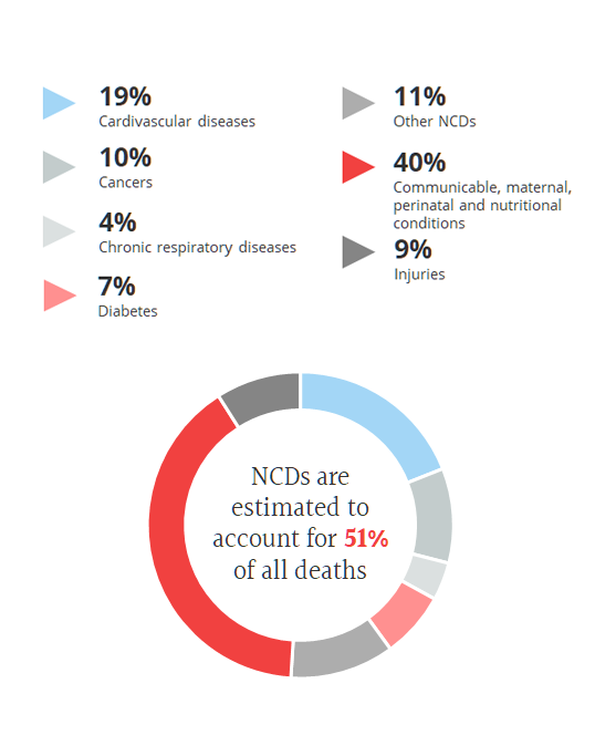 NCD reports